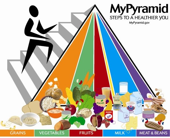 The food pyramid takes you back to the basics of appetite control
