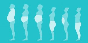 The spectrum of BMI, body fat on different parts of the body