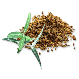 Sarsaparilla is used to detoxicate and relieve heat/dampness.