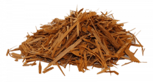 Yohimbe bark is an ancient, natural stimulant.
