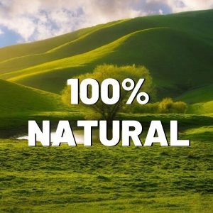100% natural energy pills that work